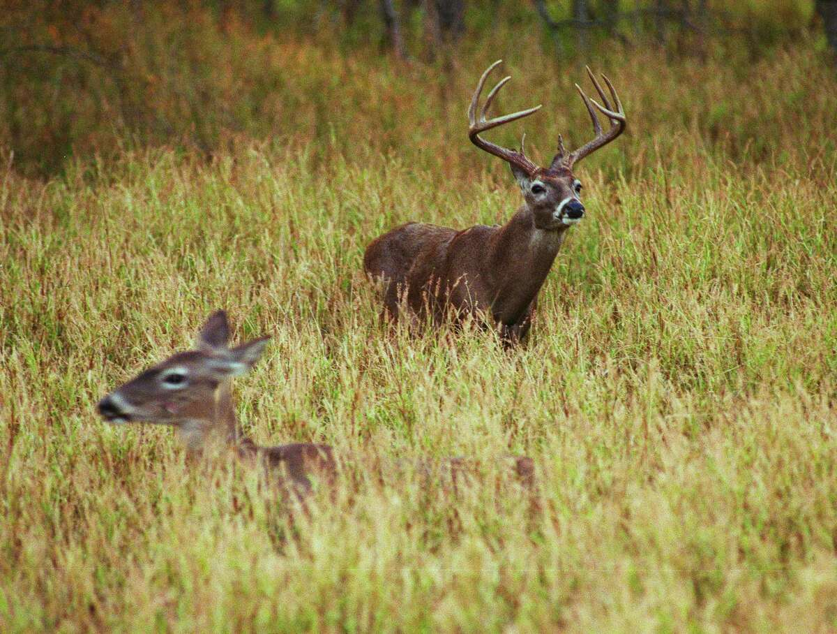 New York state lawmakers this week approved legislation that would reduce the threshold for being guilty of hunting while intoxicated.