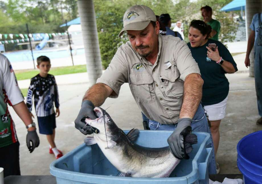 Clarence Tipton, with The Woodlands Bass Club, helps weigh fish during the 11th Annual Creekwood Fishing Derby on Saturday, March 17, 2018, at Creekwood Park in The Woodlands. Photo: Michael Minasi, Staff Photographer / © 2018 Houston Chronicle