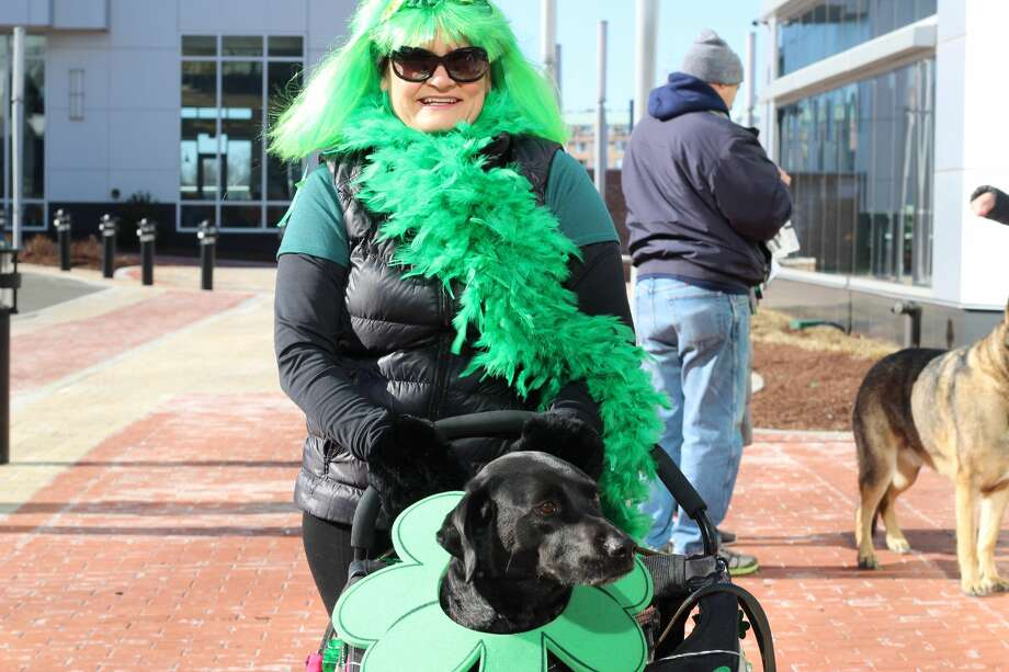 Harbor Point held its 6th Annual St. Patrick's Day Shamrock Stroll 5K Walk/Run on March 17, 2018 in Stamford. Runners and walkers headed out in their best green outfits–and so did their furry friends. A St. Patrick's Day pet costume parade was also on hand at Harbor Point. Were you SEEN? Photo: Courtney M. Lewis