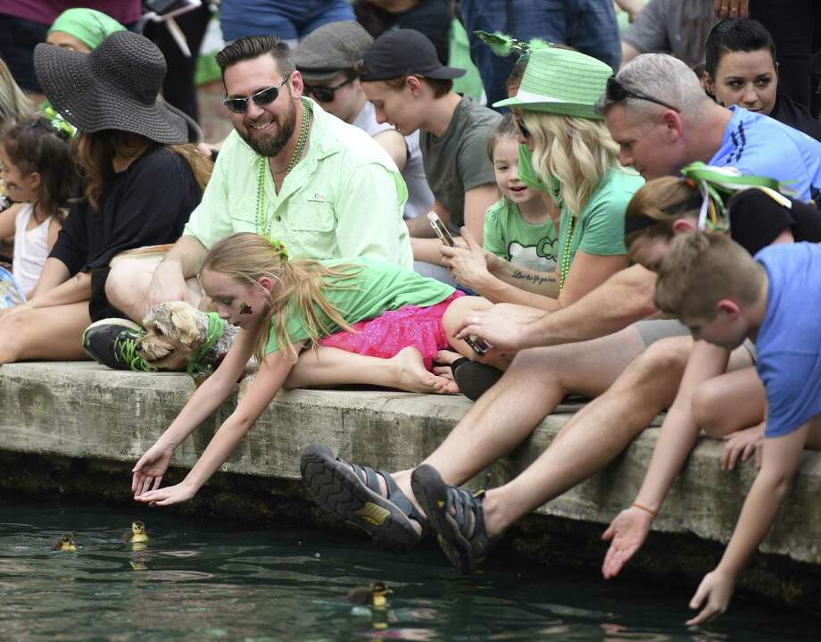 Children reach for ducklings in the San Antonio River as they await the start of the St. Patrick's Day Festival parade at  the Arneson River Theatre on Saturday, March 17, 2018. The event started in 1968 and is organized by the San Antonio River Walk Association and the Harp & Shamrock Society of Texas. Photo: Billy Calzada, Staff / San Antonio Express-News / San Antonio Express-News