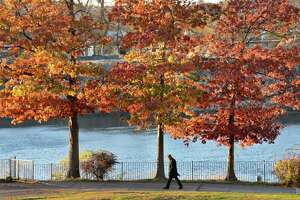 A lone figure walks beneath a canopy of fall foliage along Hudson River in Riverfront Park Friday Nov. 10, 2017 in Troy, NY.  (John Carl D'Annibale / Times Union)