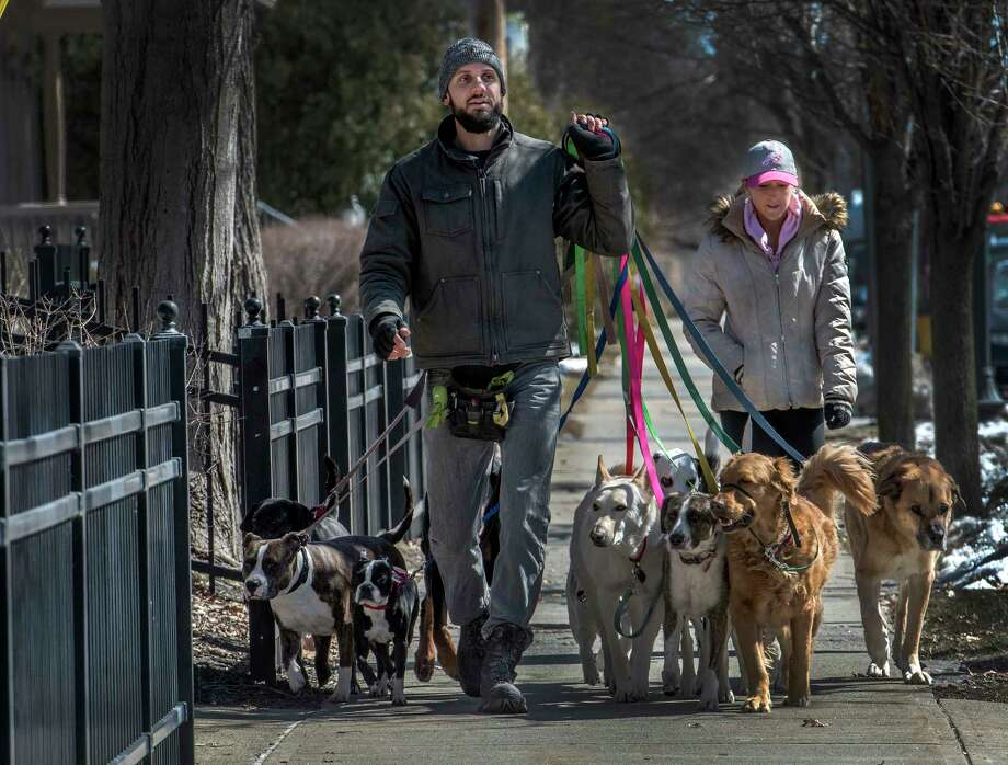 Tim Pink of Saratoga Dog Walkers takes his charges on a walk down Union Street to get some sun and exercise Monday March 19, 2018 in Saratoga Springs, N.Y. (Skip Dickstein/Times Union) Photo: SKIP DICKSTEIN, Albany Times Union