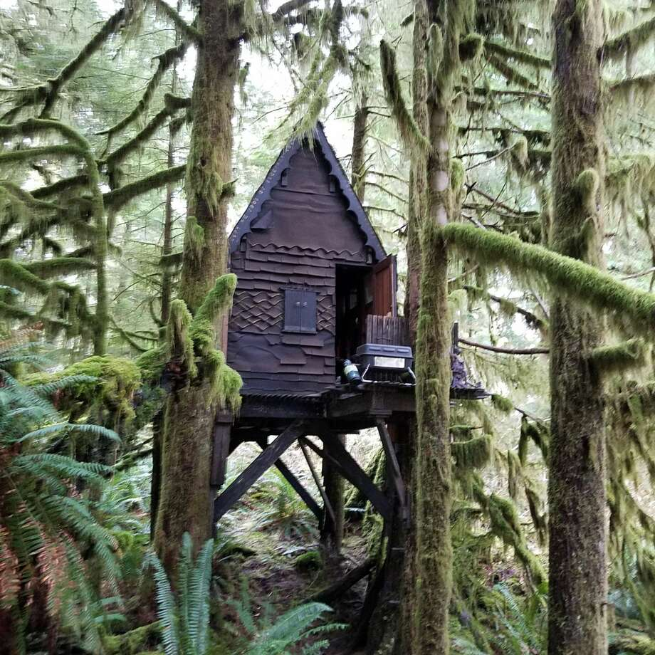 The home was known to the U.S. Forest Service for about seven years, he said, and was last examined by that agency about two to three years earlier. Photo: King County Sheriff's Office