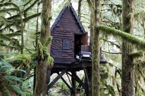 The home was known to the U.S. Forest Service for about seven years, he said, and was last examined by that agency about two to three years earlier.