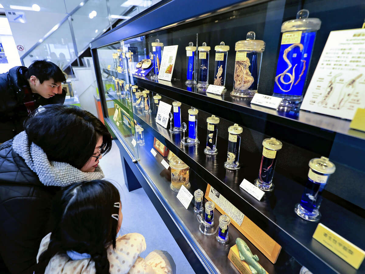 At the Meguro Parasitological Museum in tokyo, exhibits who how types of parasites differ depending on their host animals.