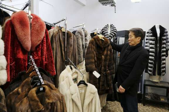 In this photo taken Friday, March 16, 2018, Benjamin Lin holds up a fur coat at the B.B. Hawk showroom in San Francisco. San Francisco could become the largest U.S. city to ban the sale of fur items, a move that would hearten animal lovers but frustrate niche business owners who say they're fed up with a city that dictates what retailers can or can't sell. If the ban is approved by the Board of Supervisors on Tuesday, March 20, 2018, San Francisco would join two other California cities, West Hollywood and Berkeley, in saying no to a symbol of glamour that animal advocates say is built on cruelty and doesn't reflect the city's values. (AP Photo/Eric Risberg)