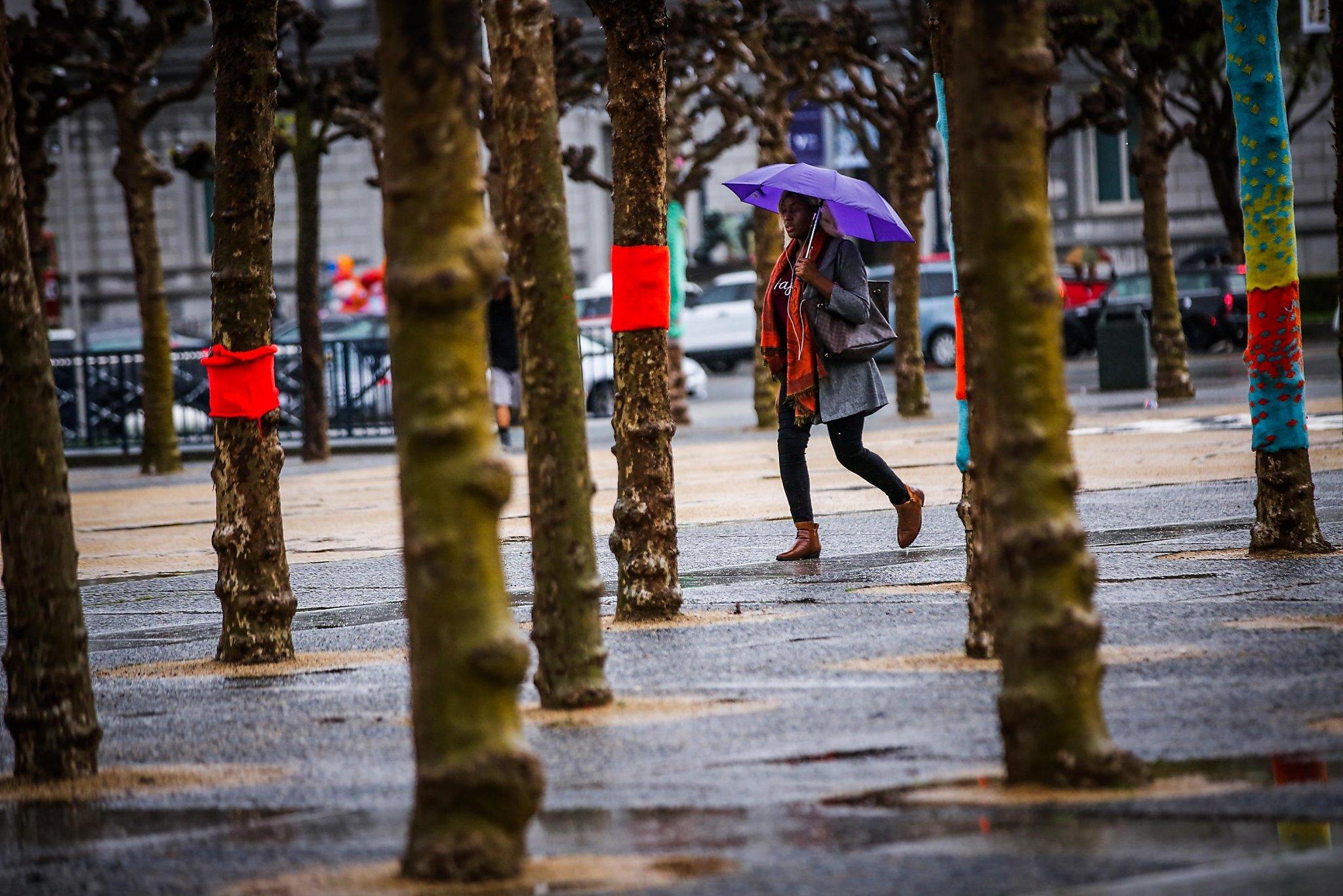 Strong storm brings Bay Area flood warnings, high wind advisories | San Francisco Gate