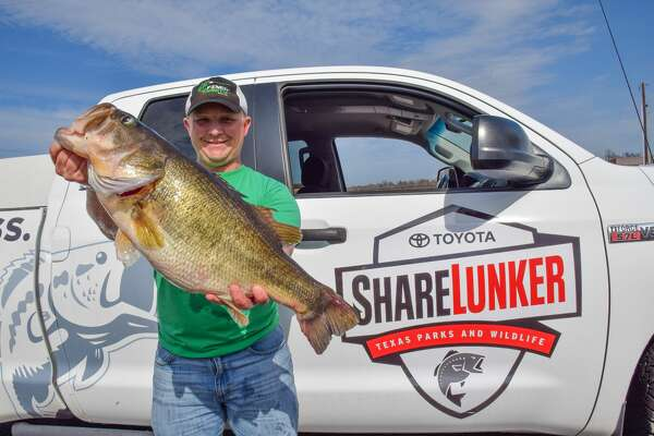 Angler Alex Finch landed the 13.06 pound Legacy Class largemouth bass during a solo fishing trip to Lake Fork on March 11.