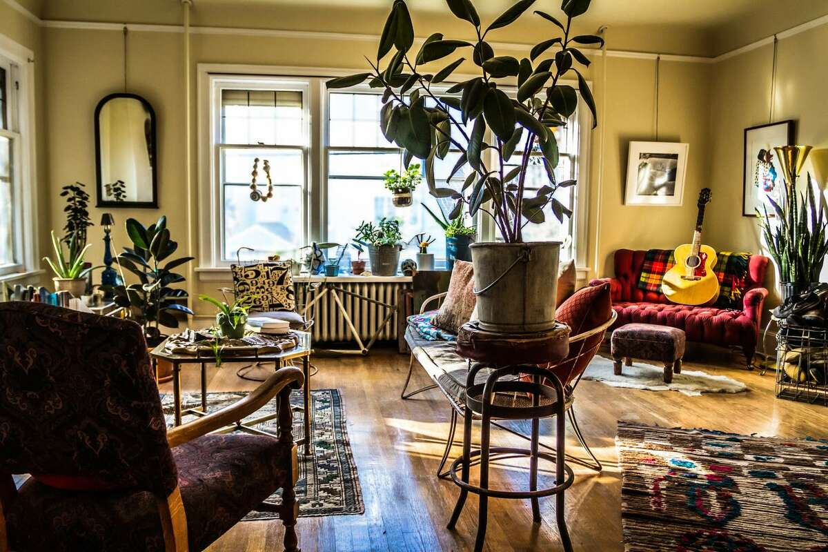 This Capitol Hill apartment features stylish decorative touches and offers a private room for your stay.