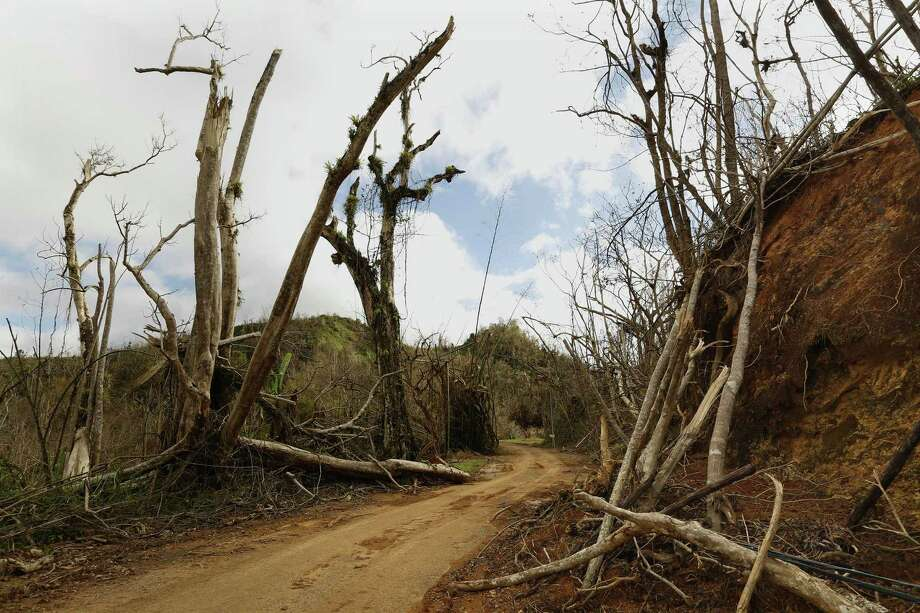 The mountain town of Juyaya, Puerto Rico, is one of the most remote on the island, and help was slow to arrive due to roads blocked by landslides and fallen trees. This is the road from Ciales to Jayuya. Electricity was just recently restored to Jayuya. Photo: Carolyn Cole /TNS / Los Angeles Times
