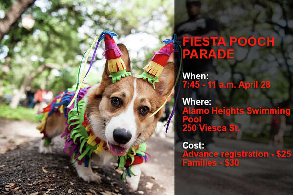 The 20th annual Fiesta Pooch Parade welcomes all pups to a 2.6-mile walk with their favorite humans.