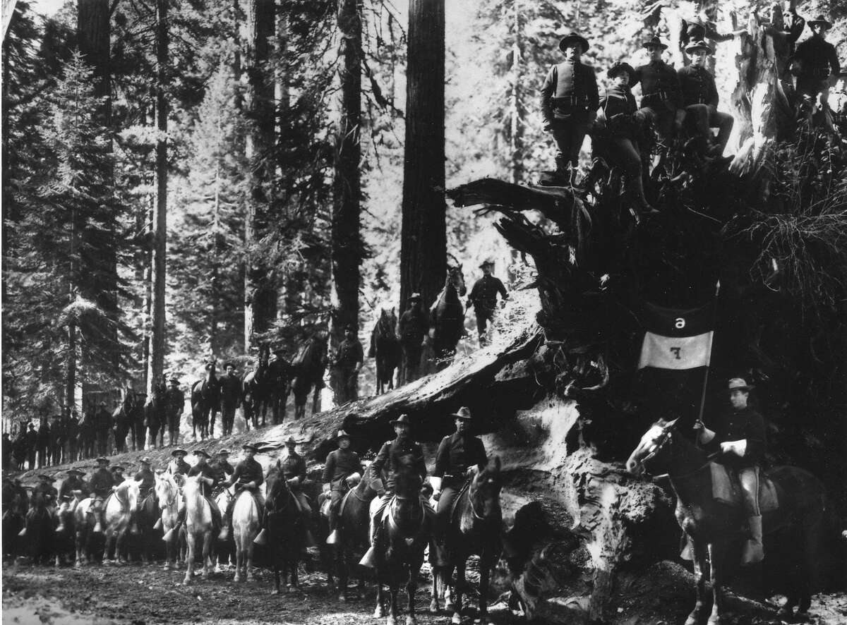 Troop F of the Sixth U.S. Cavalry from the Presidio of San Francisco at the Fallen Monarch in the Mariposa Grove of Yosemite National Park, in the 1890s Photo courtesy of the Presidio Army Museum Handout No credit