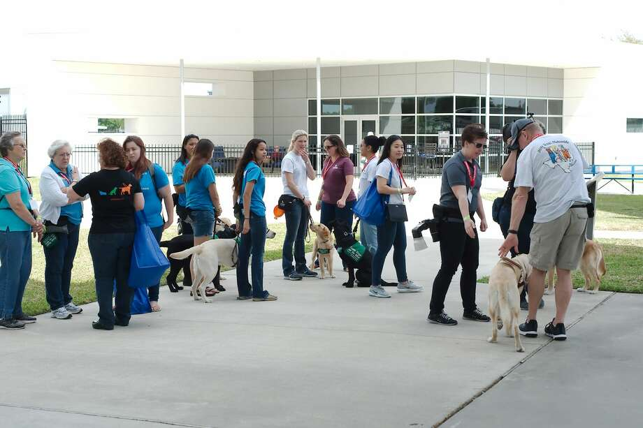 Guide Dogs for the Blind organization volunteers tour Space Center Houston with their guide dogs in training as the young dogs learn about crowds and public spaces Friday, Mar. 23. Photo: Kirk Sides / Houston Chronicle