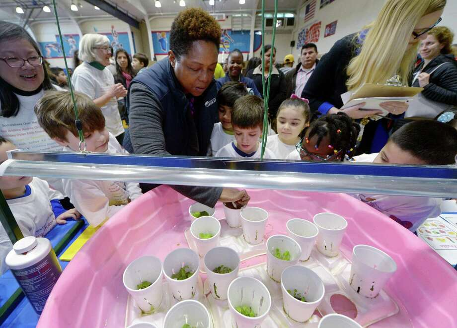 "Judge and Conncan community organizer Toni Williams looks over the Columbus School First grade project, Lettuce Eat Produce, during the citywide STEM Expo Saturday, March 24, 2018, at Brien McMahon High School in Norwalk, Conn.The second annual citywide event, which is themed ""Innovation,"" focused on the ability of students to think, question, design, create, struggle, collaborate, try, solve,  invent, reflect and learn. Photo: Erik Trautmann / Hearst Connecticut Media / Norwalk Hour"
