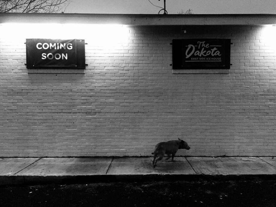 The Dakota East Side Ice House will open in April at 433 Hackberry St. Photo: Courtesy Kent Oliver