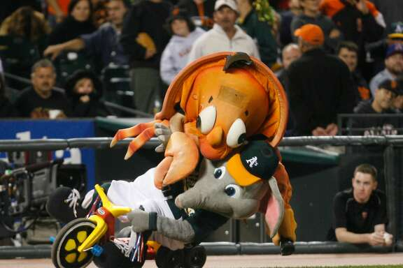 "giants_0015_db.JPG Oakland Athletics mascot ""Stomper"" is attacked by the Giants' ""Crazy Crab"" between innings during the game vs. the San Francisco Giants  at AT&T Park in San Francisco, CA  on Friday, June  23,  2006.  shot: 6/23/06 Darryl Bush / The Chronicle"