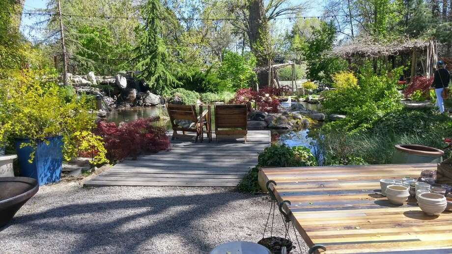 Sierra Water Gardens was a boutique Reno nursery before its owners converted the property into an event space and Airbnb rental. On Saturday, an Airbnb renter threw a party at the property that drew underage attendees and 15 cop cars, an owner of the rental said. Photo: Mike B./Yelp