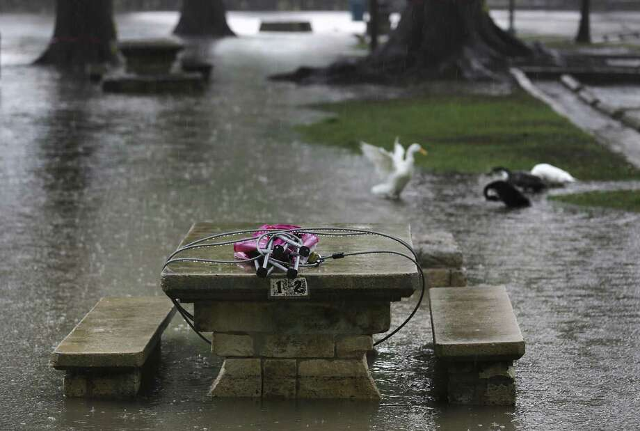 Ducks take a bath Wednesday in the flooded San Antonio River in Brackenridge Park. Thunderstorms with large hail is expected in the San Antonio area Friday night. Photo: Bob Owen /San Antonio Express-News / ©2018 San Antonio Express-News