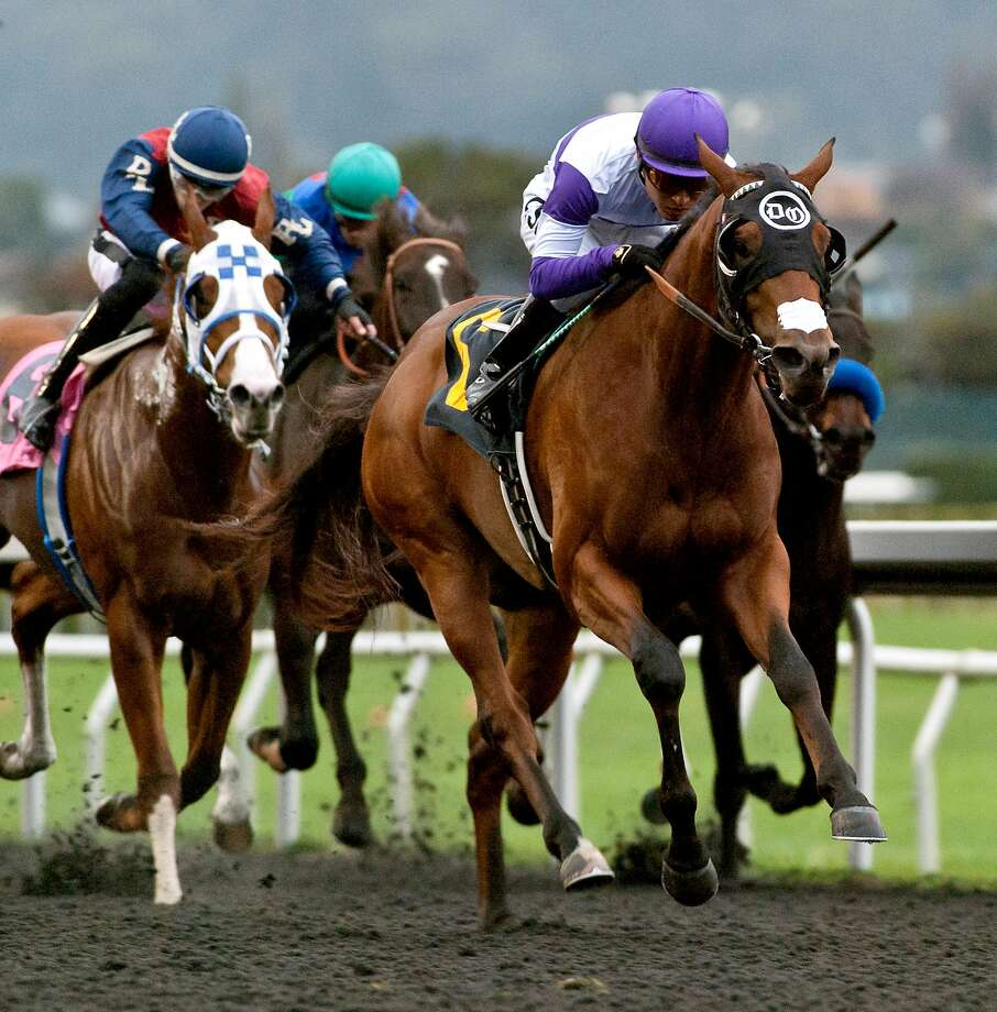 One of Frank Conversation's four career wins came in 2016 when it won the California Derby at Golden Gate Fields with jockey Mario Gutierrez. Photo: Shane Micheli / Vassar Photography 2016