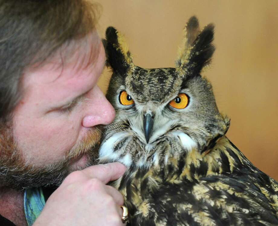 Founder and Director Chris Evers nuzzles with a Eurasian eagle-owl during the Animal Embassy presentation at the Senior Center in Greenwich, Conn. Wednesday, March 28, 2018. Local seniors got the chance to meet and learn about a variety of exotic animals from Animal Embassy, a hands-on animal experience promoting exotic animal rescue and environmental education. Photo: Tyler Sizemore / Hearst Connecticut Media / Greenwich Time