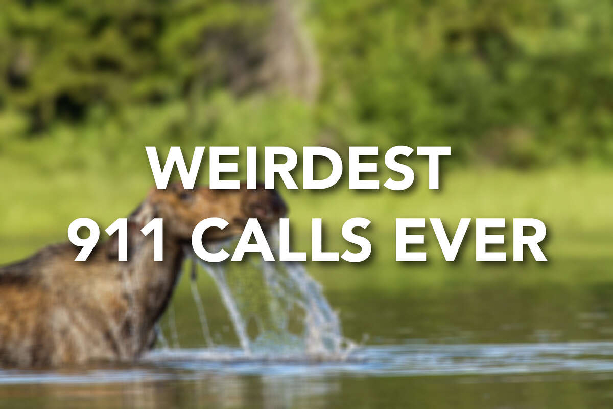 On Reddit, 911 dispatchers revealed some of the oddest calls they've ever received. It's a harrowing job, but these moments provided some levity. Click through to see some of the weirdest 911 calls ever received.