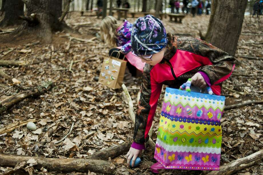 Hailey Marsh of Midland, 9, picks up an egg while participating in an egg hunt during the annual Nature's Eggs Extravaganza event at Chippewa Nature Center on Saturday, March 31, 2018. (Katy Kildee/kkildee@mdn.net) Photo: (Katy Kildee/kkildee@mdn.net)