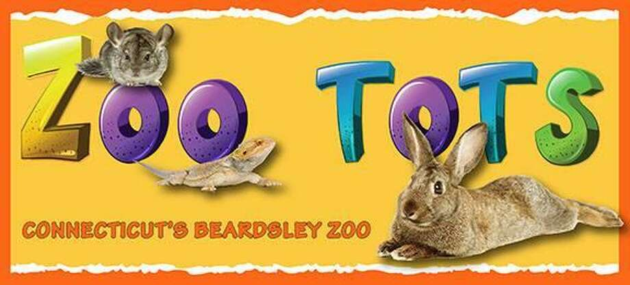 "At 10:30 a.m. April 10 and April 11, 2018, Connecticut's Beardsley Zoo, 1875 Noble  Ave., Bridgeport, will offer the program ""Zoo Tots: Fur, Feathers and Scales."" Photo: Contributed / Courtesy Of Connecticut's Beardsley Zoo"