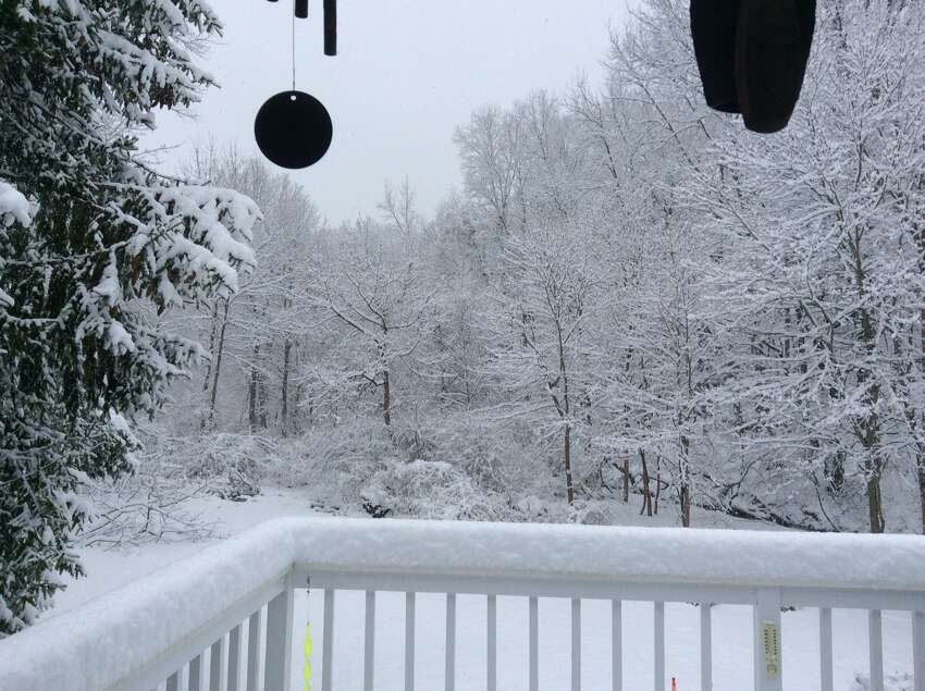 Trumbull: 6.5 inches