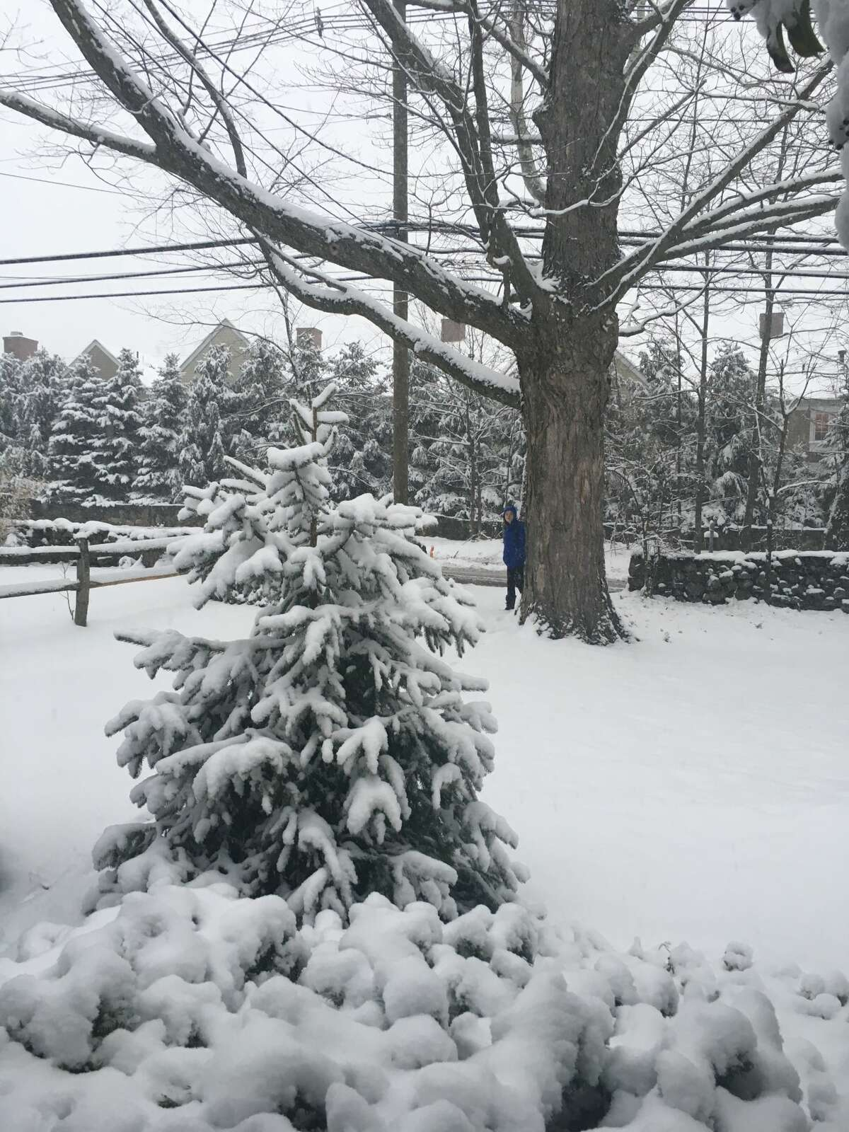 This backyard in Old Greenwich, Conn. was blanketed in snow during an April 2, 2018 snow storm.