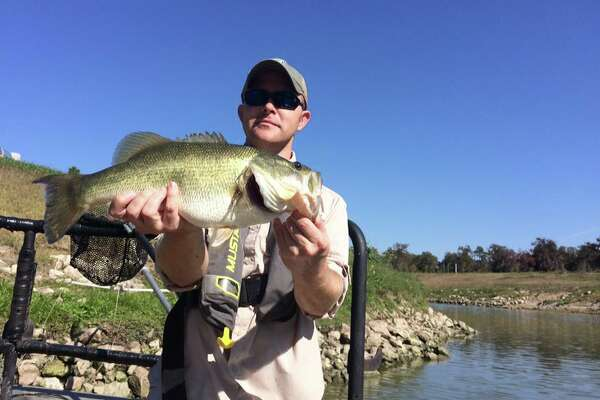Here's another largemouth bass.