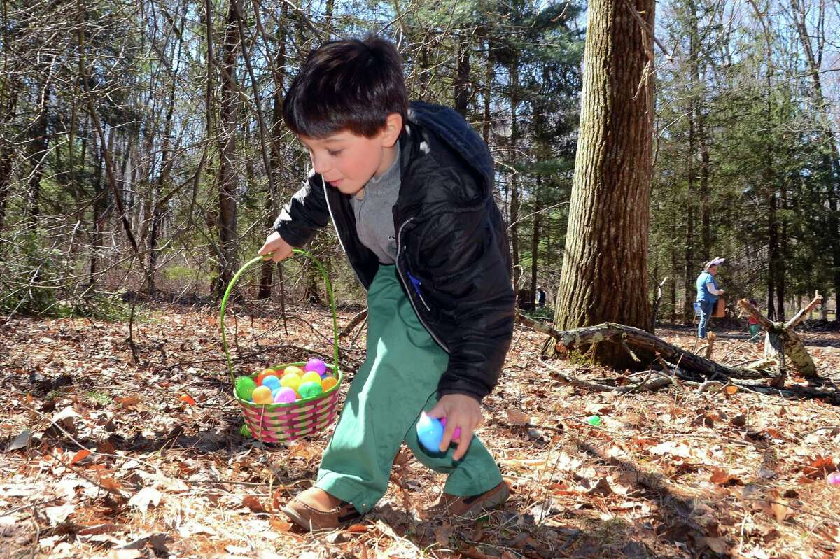 Egg Hunt, Fairfield The Connecticut Audubon Society Center's annual Easter egg hunt has returned this year with a full day of family-friendly activities on Saturday. Find out more.