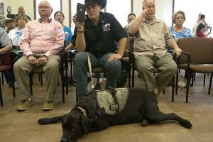 Brandon Burkhart (center) sits with his dog Thursday March 29, 2018 at Olmos Park City Hall while the Olmos Park City Council meets in executive session to discuss a possible legal challenge to a city ordinance. The city had an ordinance prohibiting people other than police from carrying long guns in public, a conflict with state law. After a recent incident between police and the president of Open Carry Texas, the council met and repealed the Olmos Park gun ordinance. Burkhart said he is the president of This Is Texas Freeedom Force.