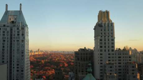Looking north over Central Park from the top floor of the Parker Meridien hotel in midtown Photo: Chris McGinnis