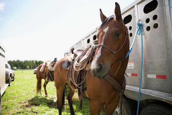 """No trailers, in a subdivision that allows horses.""Jaija T."
