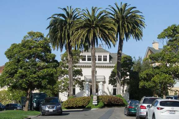Large palm trees and other greenery sit on an island amongst homes at 1 Presidio Terrace seen Tuesday, April 3, 2018 in San Francisco, Calif.