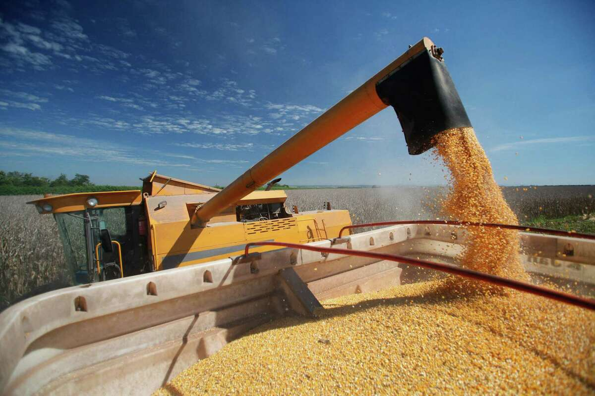 Biofuels like ethanol supply a full 10 percent of America's motor fuel. (Dreamstime)