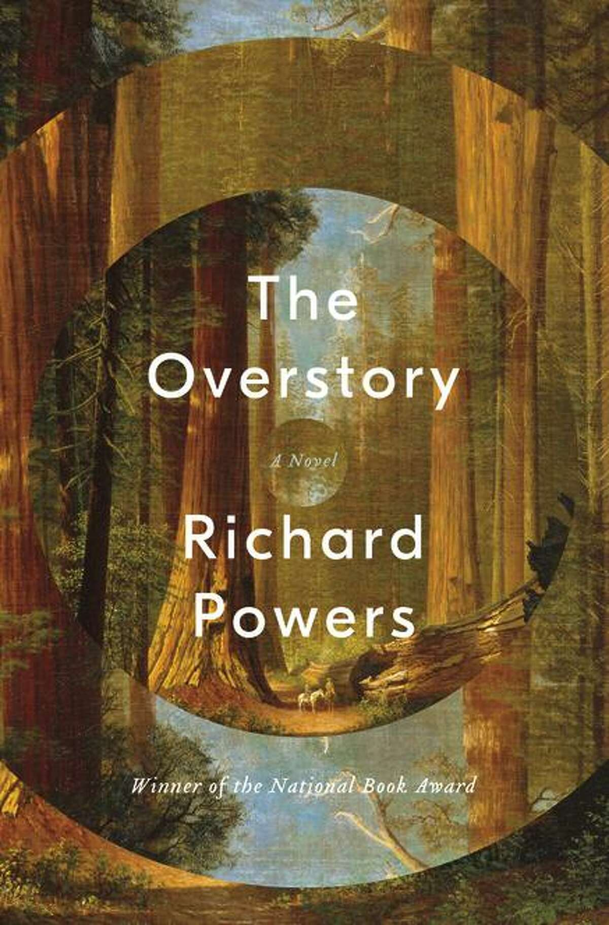 """""""The Overstory"""""""