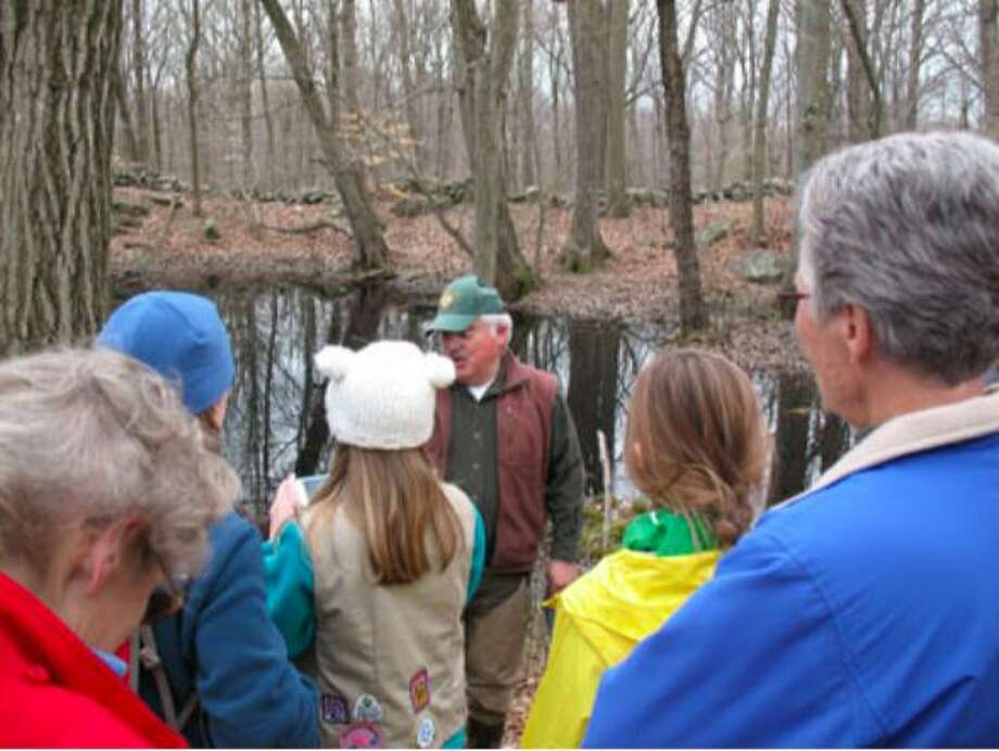 The Greenwich Tree Conservancy will host a Vernal Pool Walk at the Babcock Preserve from 2 to 4 p.m. Sunday. This is an easy to moderate walk, but participants must be able to traverse uneven ground. Photo: Contributed