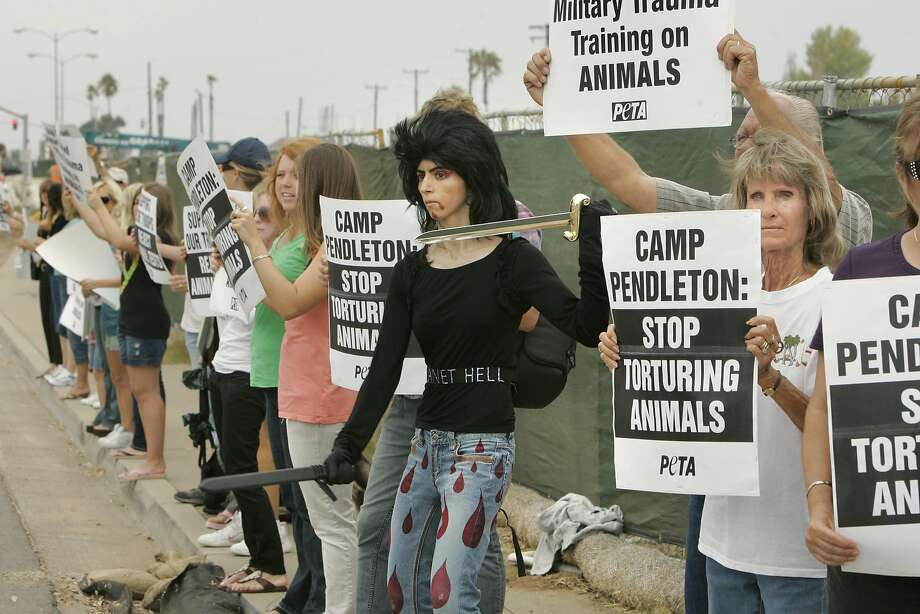 Nasim Najafi Aghdam, center, takes part in an animal rights protest outside Camp Pendleton in 2009. (Charlie Neuman/San Diego Union-Tribune/TNS) Photo: Charlie Neuman, TNS