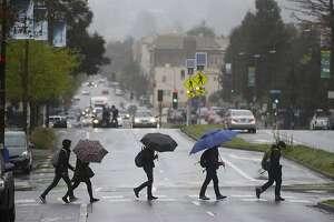 Pedestrians armed with umbrellas cross Oxford Street in Berkeley, Calif. on Friday, April 6, 2018.