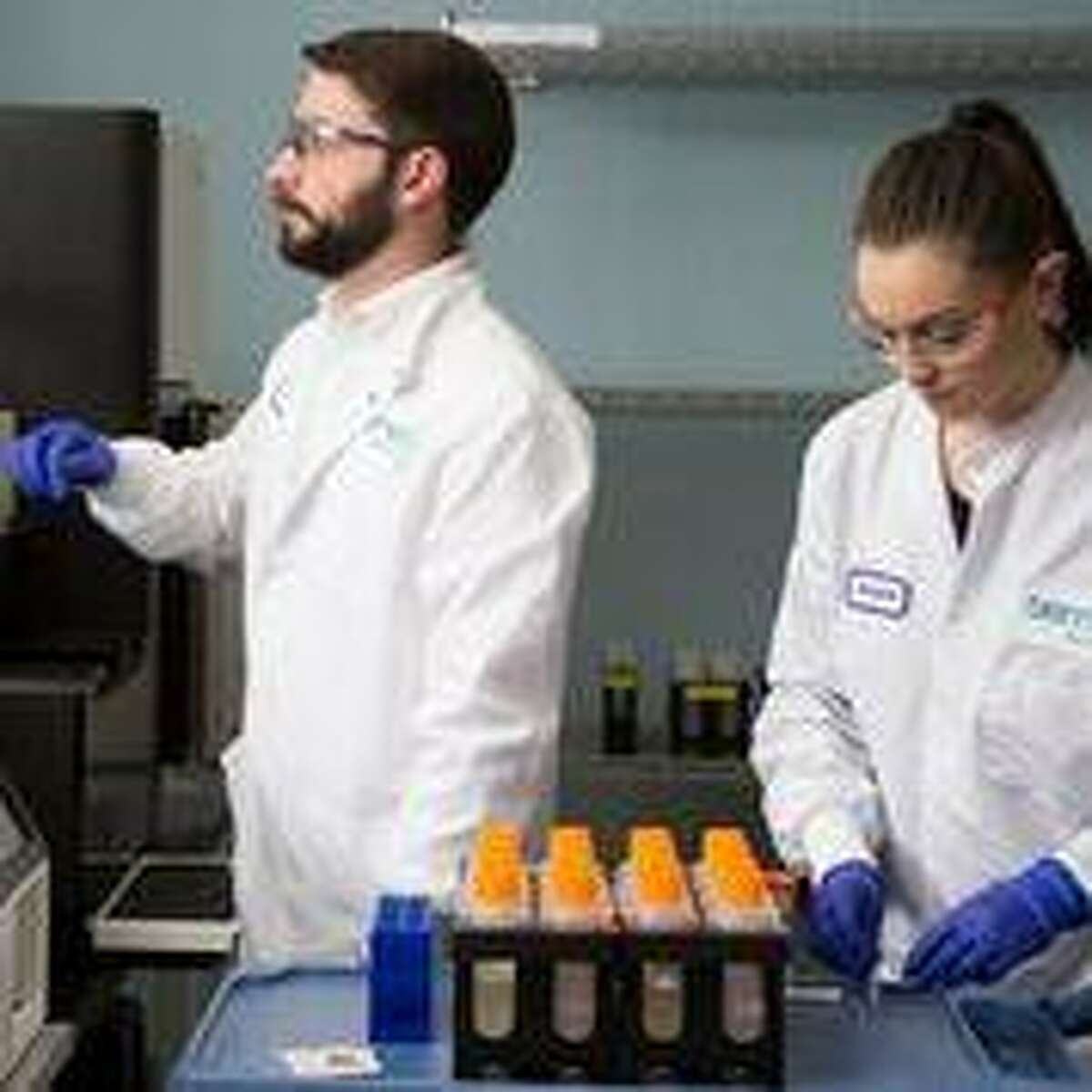 Sema4 employees work at the company's lab at 1 Commercial St., in Branford.