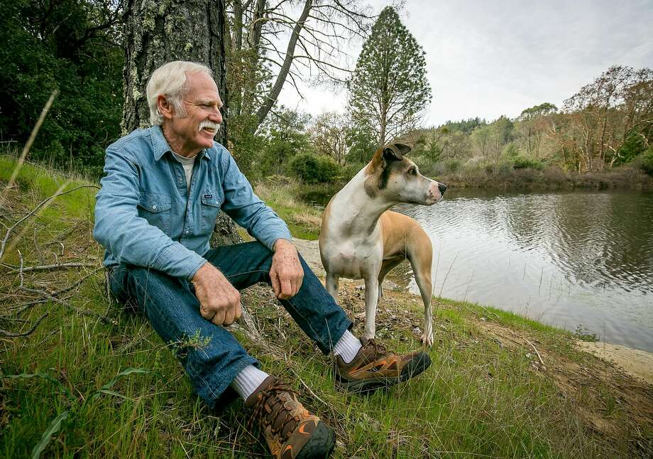 Winemaker Randy Dunn, shown with his dog Dominga at the Wildlake Nature Preserve, has become the steward of Howell Mountain. Photo: John Storey / Special To The Chronicle