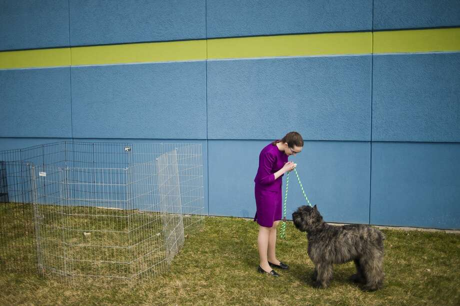 Anna Young of Negaunee takes Quinta, a Bouvier des Flandres, outside for a few minutes during the Saginaw Valley Kennel Club dog show on Saturday, April 7, 2018 at the Birch Run Expo Center. (Katy Kildee/kkildee@mdn.net) Photo: (Katy Kildee/kkildee@mdn.net)