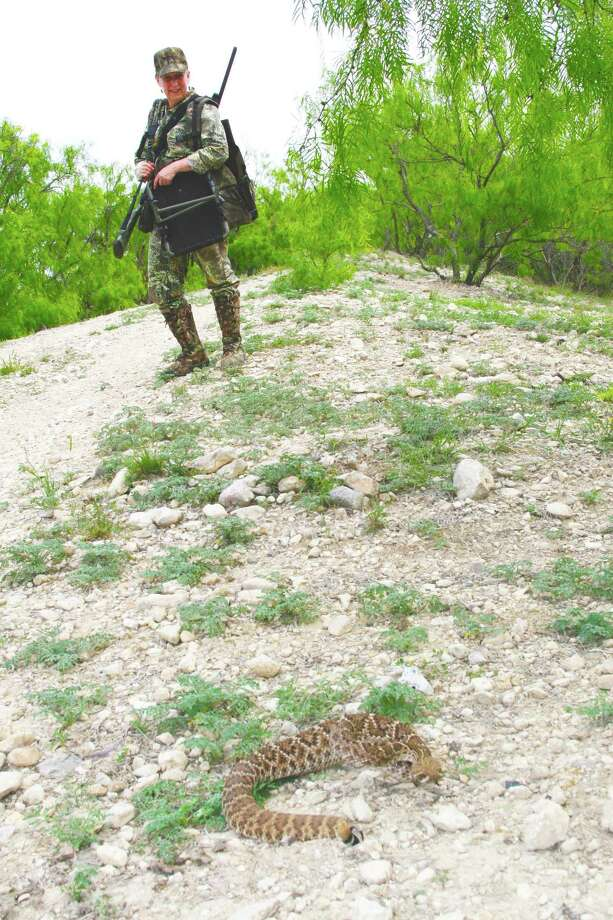 Turkey hunters share Texas' spring landscape with more than just gobblers. hens and wildflowers. Keeping a watchful eye for venomous snakes, ticks, scorpions and other potentially problematic creatures can mean the difference between an enjoyable day afield and a painful, even life-threatening encounter. Photo: Shannon Tompkins / Houston Chronicle