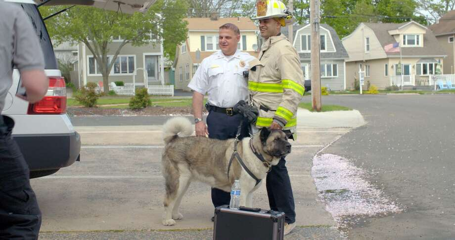 """Connection in Crisis,"" directed by Dennis Zaidi, right, will be screened at Bethel Cinema on April 25. West Shore Fire Chief Stephen Scafariello, of West Haven, Conn., left, and Spartacus, a K-9 first responder, appear in the film. Photo: ""Connection In Crisis"" / Contributed Photo"
