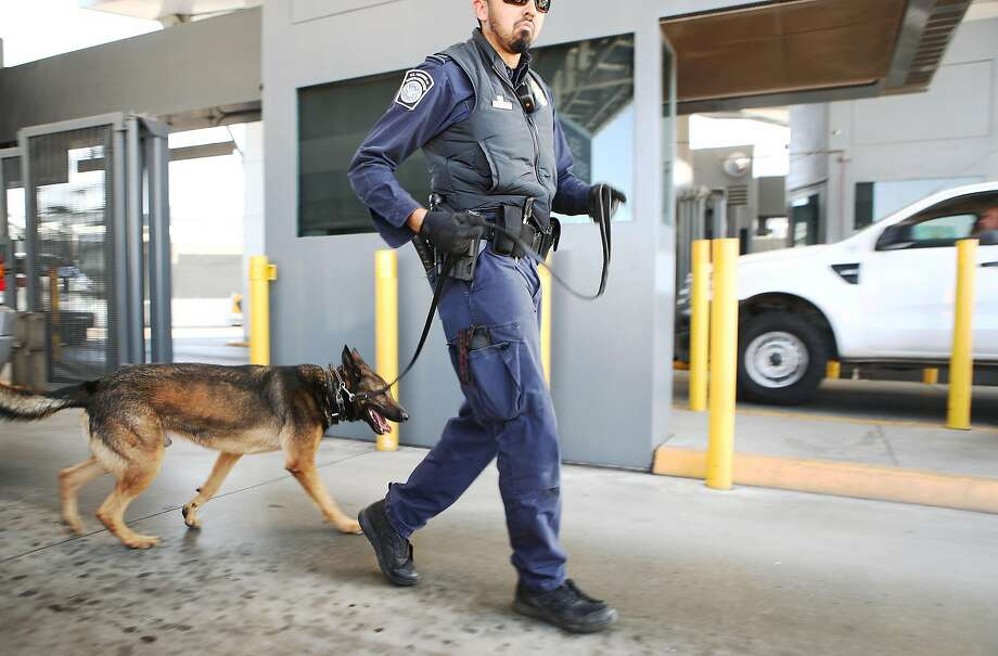 A Customs and Border Protection officer, with his dog, walks to inspect vehicles entering the United States at the port of entry from Mexico in San Ysidro (San Diego County). Photo: Mario Tama / Getty Images