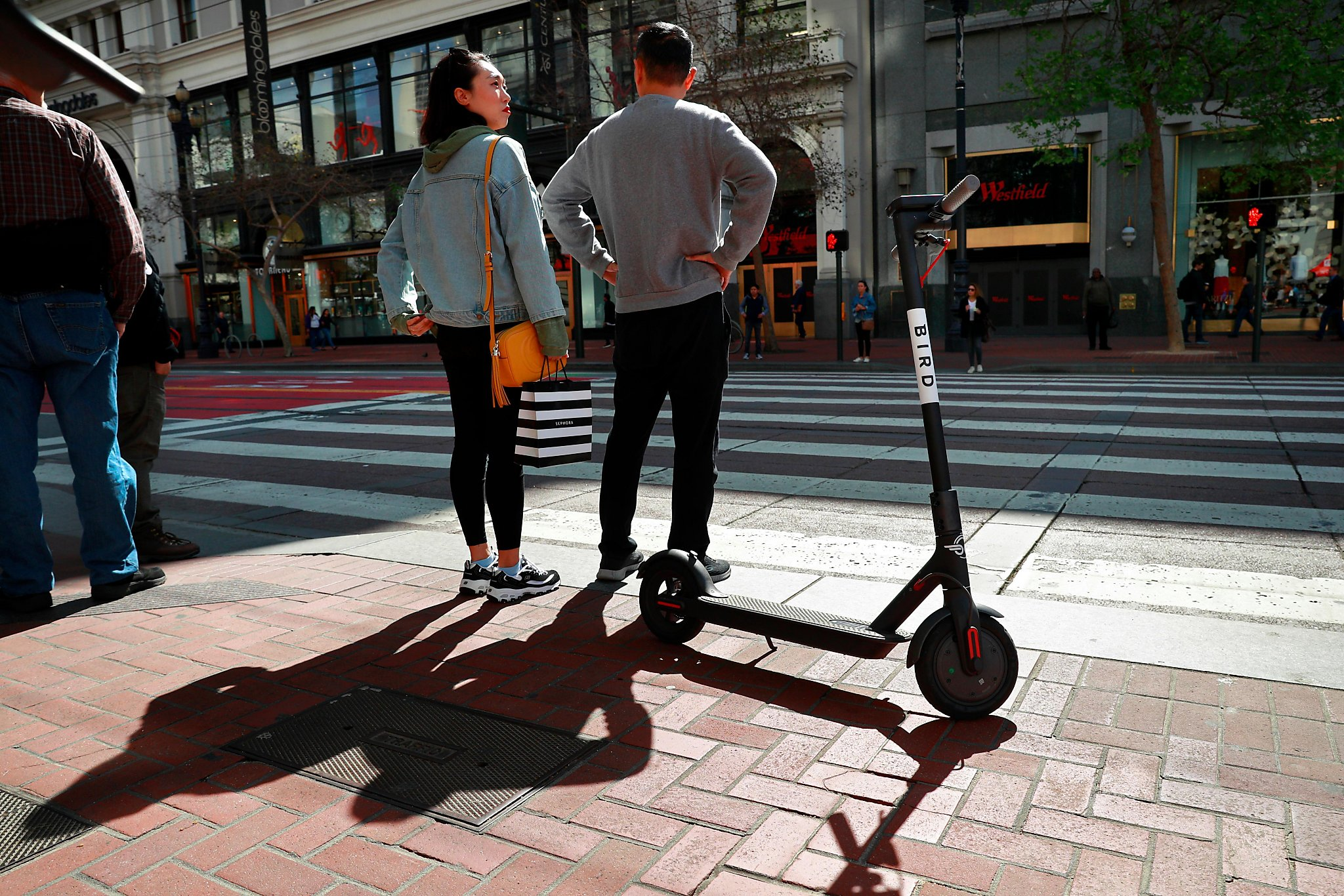 Sf Supervisor Scooter Firm Bird S Song Of Alarm Just