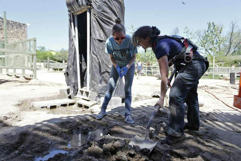 UTSA student Julie Griffee (from left), and UTSA assistant research professor Gold Darr Hood build a shower for the elephants in their exhibit Friday March 30, 2018 at the San Antonio Zoo. Photo: Edward A. Ornelas, Staff / San Antonio Express-News / © 2018 San Antonio Express-News