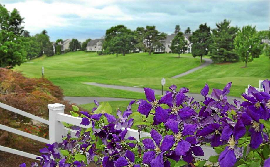 TPC River Highlands in Cromwell Photo: File Photo
