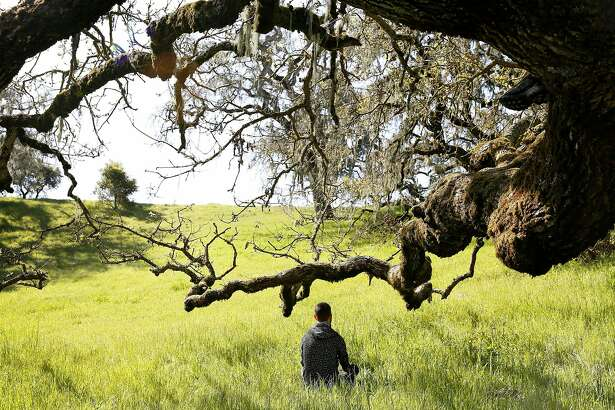 """Forest Therapy Guide Ben Page, of Los Angeles, spends some time at Crane Creek Regional Park in Santa Rosa, Calif., on Tuesday, April 3, 2018 with Amos Clifford as they explain """"forest bathing"""" which is a movement that teaches sensory connection and awareness of place."""